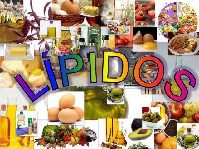 lipidios simples compostos esteroides