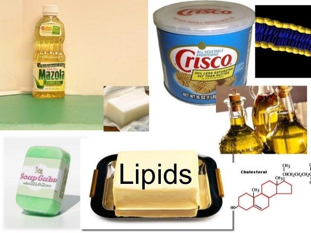 Fat Lipid 98