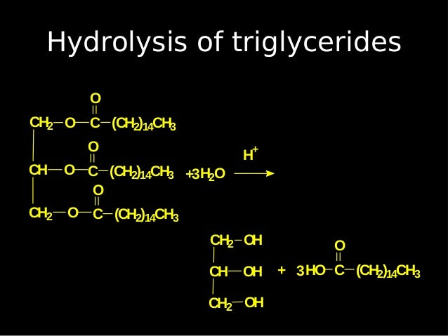 Lipid droplets and their component triglycerides and steryl esters