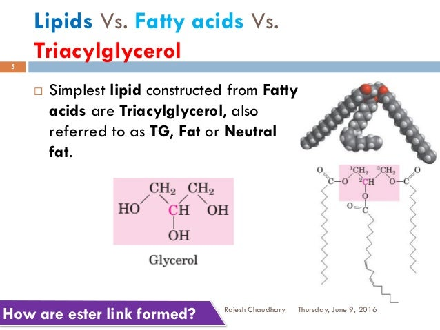 """lipids fatty acid and amp Fatty acids are """"carboxylic acids (or organic acid), often with a long aliphatic tails (long chains), either saturated or unsaturated"""" 1 when a fatty acid is saturated it is an indication that there are no carbon-carbon double bonds and if the fatty acid is saturated it is an."""