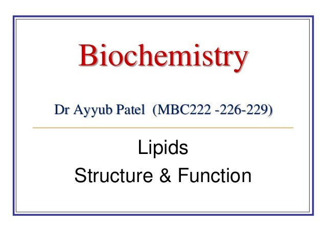 the anatomy and physiology of lipids essay Kimberly reed sc121- human anatomy & physiology i unit 2 assignment lipids are fats and fatty substances that serve anatomy and physiology essay.