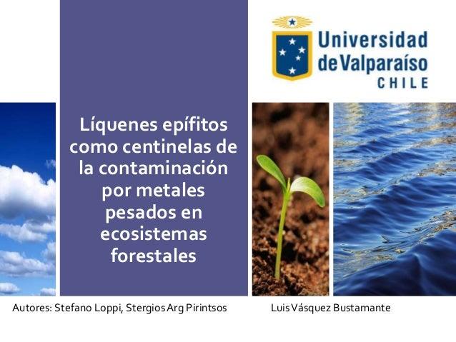 'k  s, ' Universidad  X' deVaIparaíso                       Líquenes epífitos como centinelas de  Ia contaminación  por me...