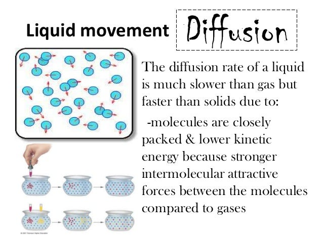 diffusion of a liquid The diffusion of liquids in liquids is slower than in gases, due to the lower kinetic energy of the liquid itself the atoms or molecules are closer together, providing for a path with many more.