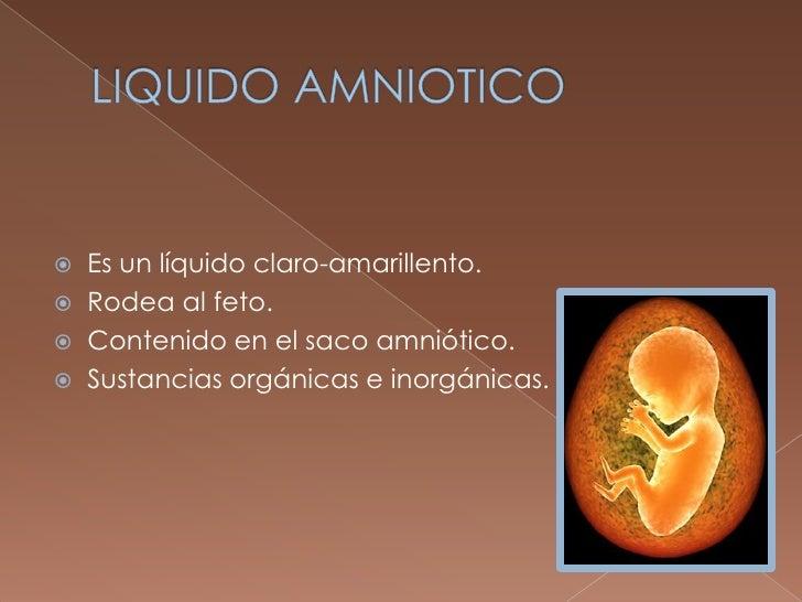 Liquido amniotico Slide 2