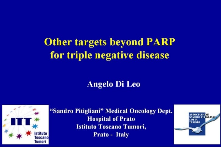 ABC1 - A. Di Leo - Other targets beyond PARP for TN disease