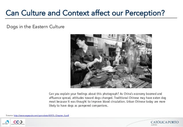 culture's influence on perception How culture influences health beliefs all cultures have systems of health beliefs to explain what causes illness, how it can be cured or treated.