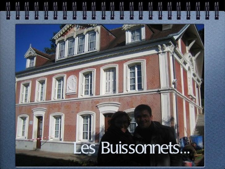 Les Buissonnets...