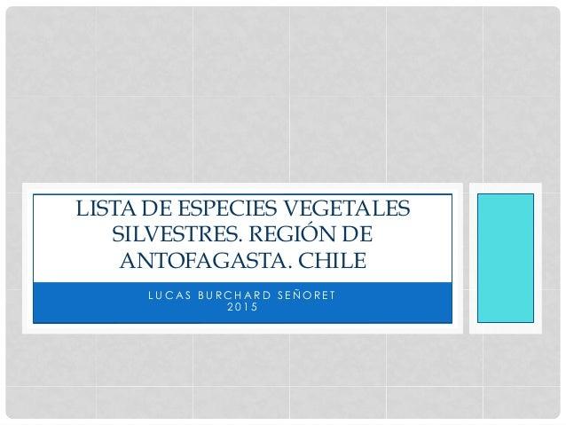 L U C A S B U R C H A R D S E Ñ O R E T 2 0 1 5 LISTA DE ESPECIES VEGETALES SILVESTRES. REGIÓN DE ANTOFAGASTA. CHILE
