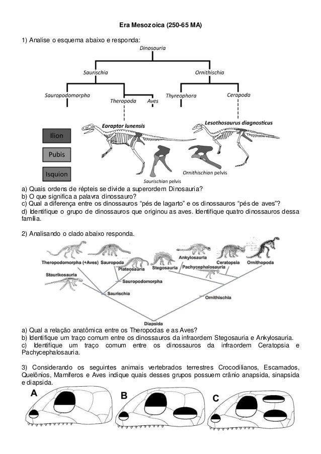 Era Mesozoica (250-65 MA) 1) Analise o esquema abaixo e responda: a) Quais ordens de répteis se divide a superordem Dinosa...