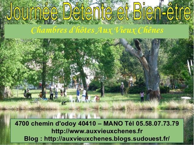 Chambres d'hôtes Aux Vieux Chênes 4700 chemin d'odoy 40410 – MANO Tél 05.58.07.73.79 http://www.auxvieuxchenes.fr Blog : h...
