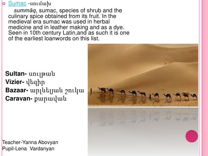 english words of arabic origin pdf