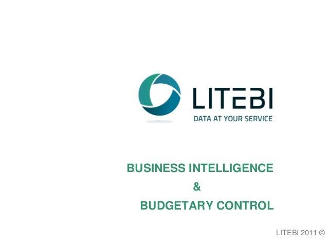 BUSINESS INTELLIGENCE & BUDGETARY CONTROL LITEBI 2011 ©