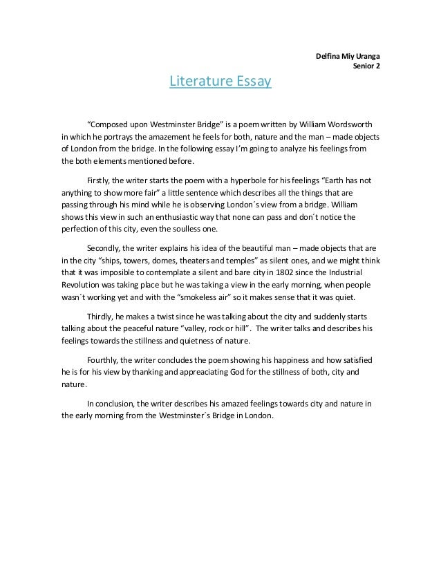 Literature essay example