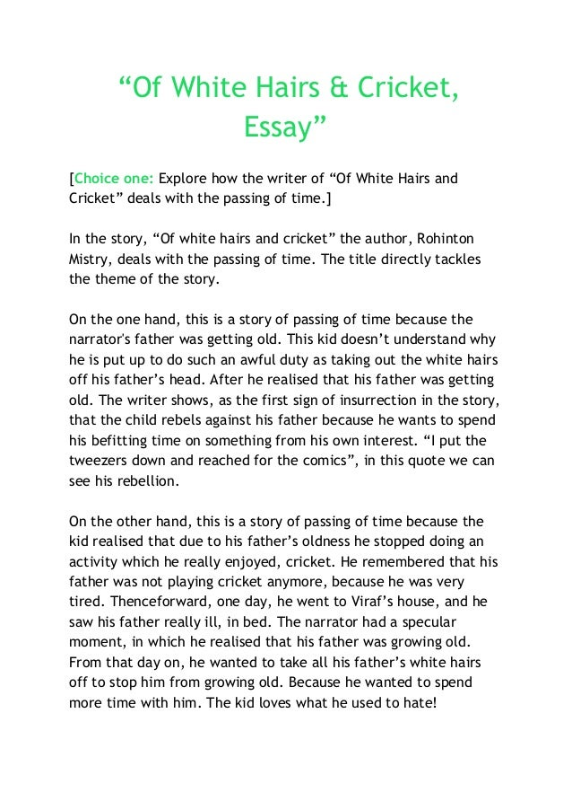an essay on cricket Essay writing on cricket in telugu - download as word doc (doc / docx), pdf  file (pdf), text file (txt) or read online telugu.