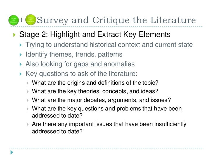 nursing essay on literature review