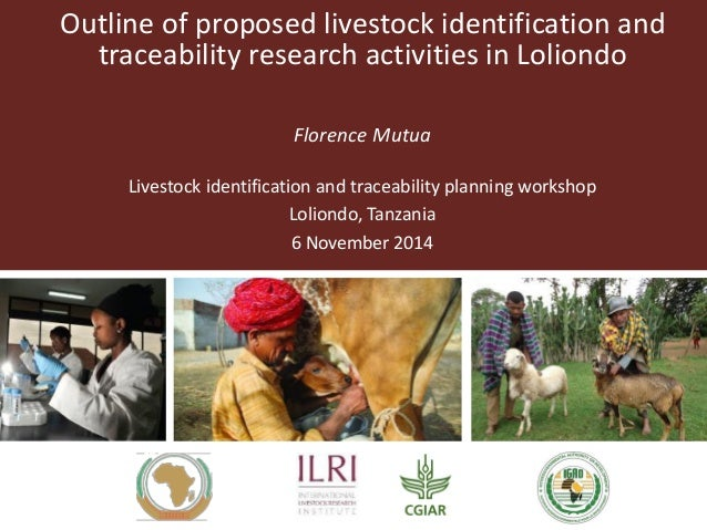 Outline of proposed livestock identification and traceability research activities in Loliondo Florence Mutua Livestock ide...