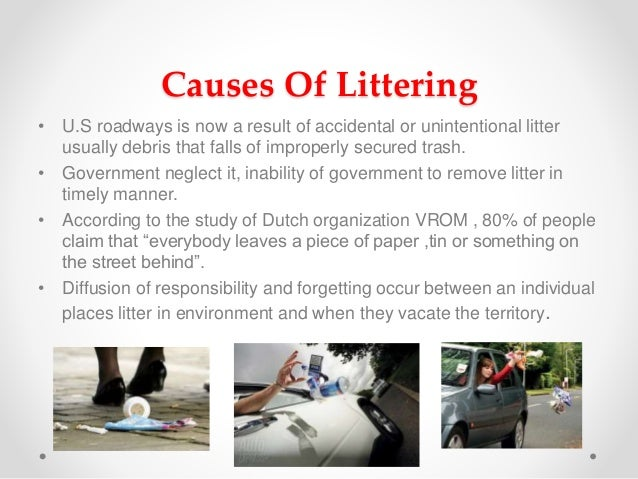 What You Can Do to Prevent Litter