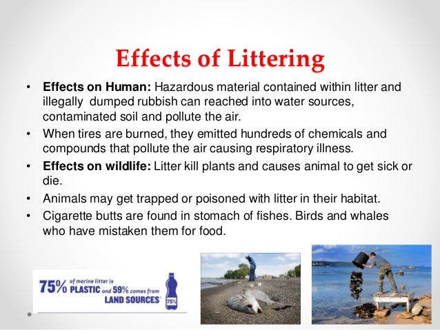 the environmental consequences of littering Littering the environment has a negative impact on our planet and damages areas where we live, work, and play according to the jb green team, an.