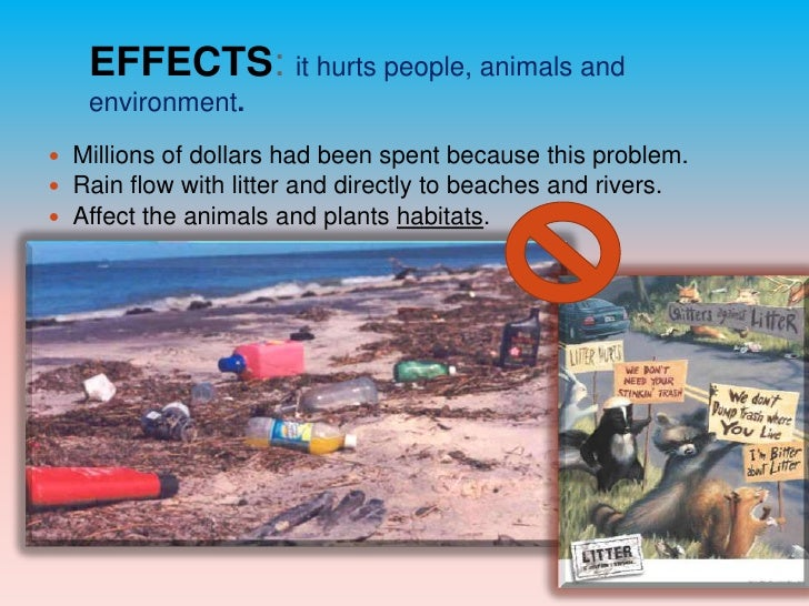 The Effects of Littering on the Environment & Animals