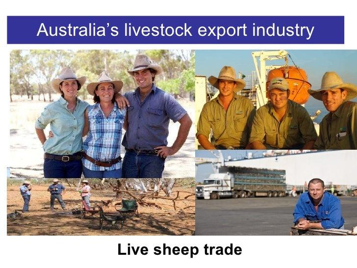 Australia's livestock export industry Live sheep trade