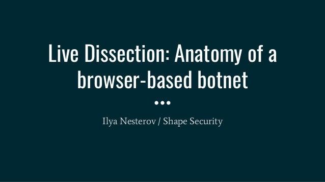 Anatomy Of A Browser Based Botnet