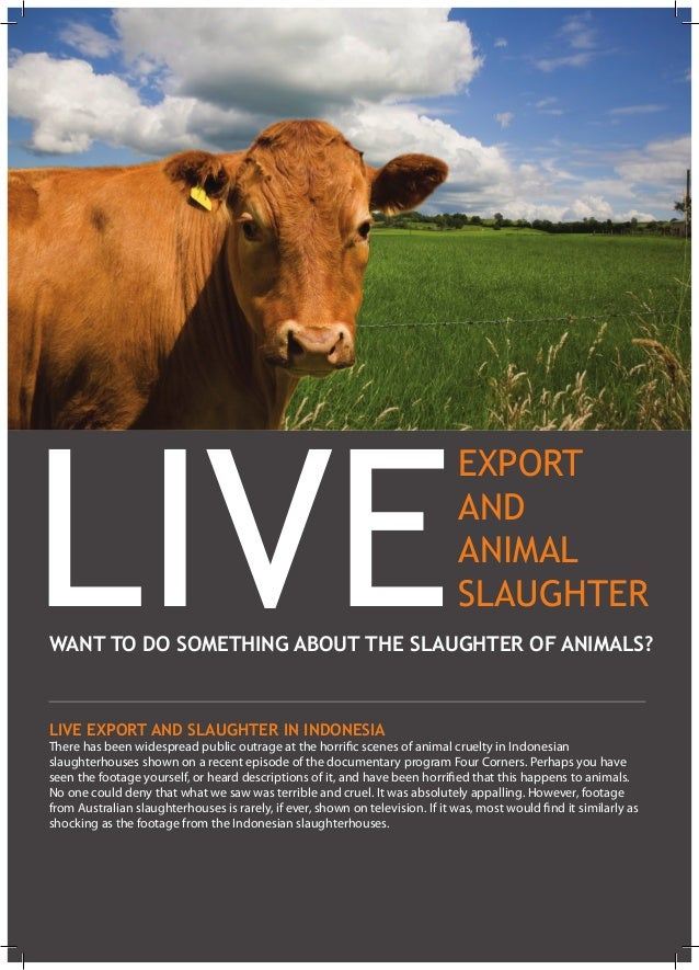Live Export and Slaughter in Indonesia There has been widespread public outrage at the horrific scenes of animal cruelty i...
