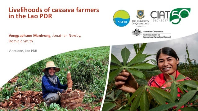 Livelihoods of cassava farmers in the Lao PDR Vongpaphane Manivong, Jonathan Newby, Dominic Smith Vientiane, Lao PDR