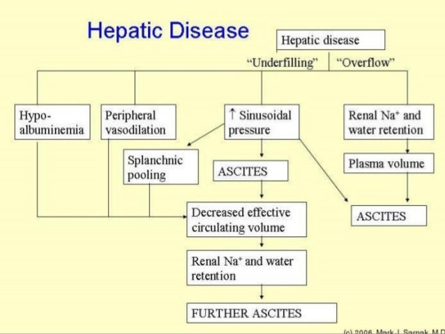pathophysiology of liver cirrhosis Cirrhosis of the liver is a chronic disease that causes cell destruction and fibrosis (scarring) of hepatic tissues fibrosis alters normal liver structure and.