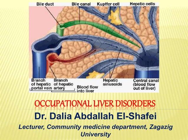 OCCUPATIONAL LIVER DISORDERS Dr. Dalia Abdallah El-Shafei Lecturer, Community medicine department, Zagazig University