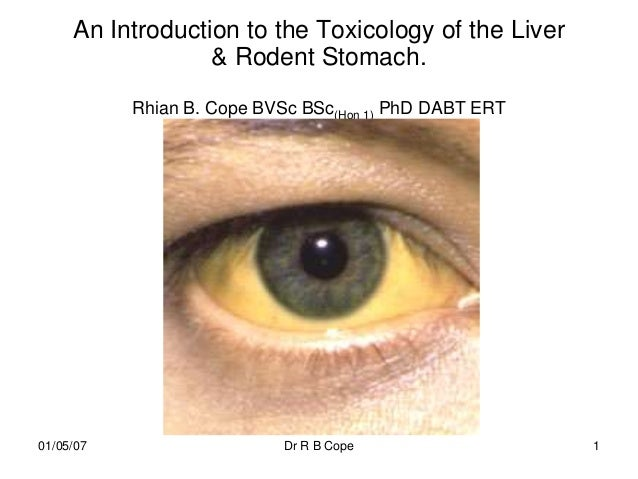 An Introduction to the Toxicology of the Liver                  & Rodent Stomach.           Rhian B. Cope BVSc BSc(Hon 1) ...