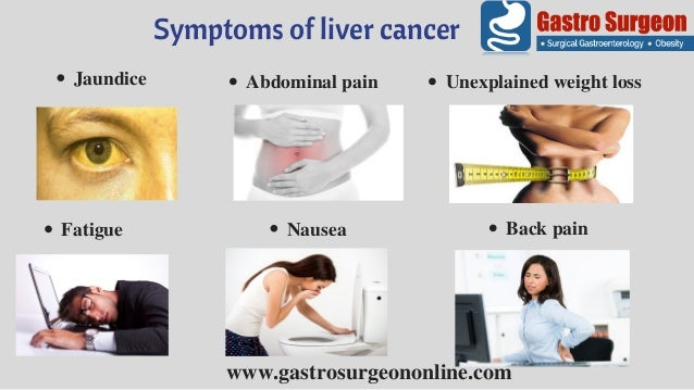 liver cancer treatment in chennai | cancer treatment centre in india, Human Body