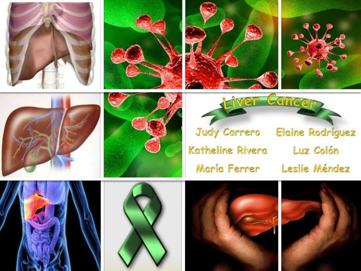 cells, tissues, and organsThe human body is a composition ofamong others that under typical conditions work in harmony to...
