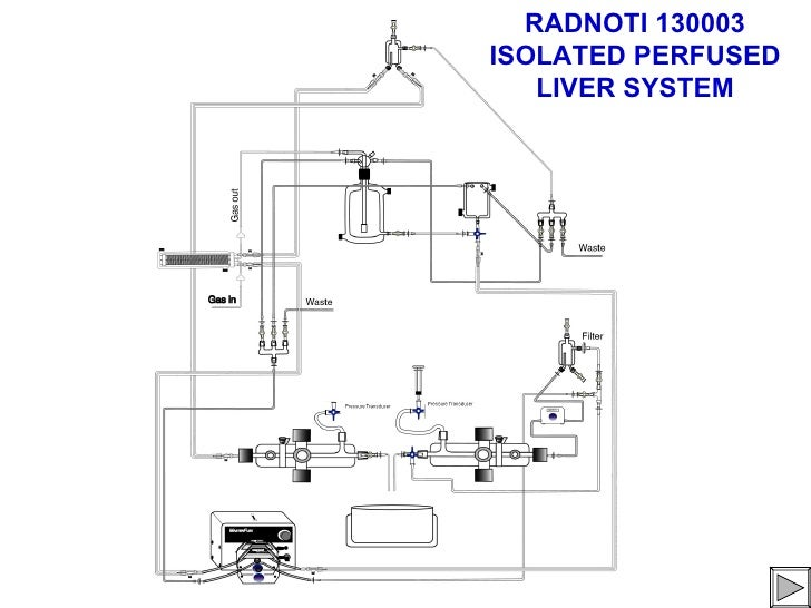 RADNOTI 130003ISOLATED PERFUSED   LIVER SYSTEM