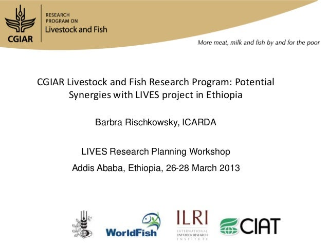 CGIAR Livestock and Fish Research Program: Potential      Synergies with LIVES project in Ethiopia            Barbra Risch...