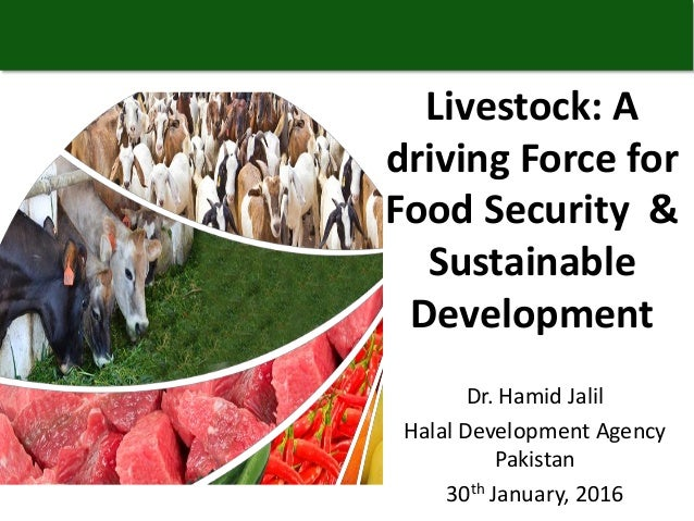 Dr. Hamid Jalil Halal Development Agency Pakistan 30th January, 2016 Livestock: A driving Force for Food Security & Sustai...