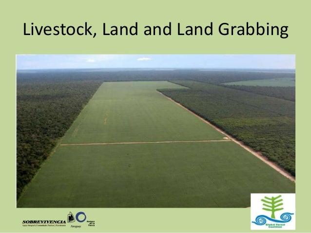 Livestock, Land and Land Grabbing