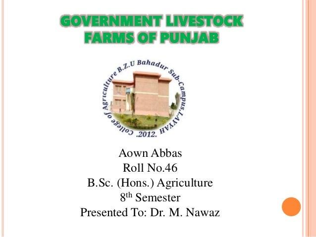 Govt Livestock farms in Punjab,PAKISTAN