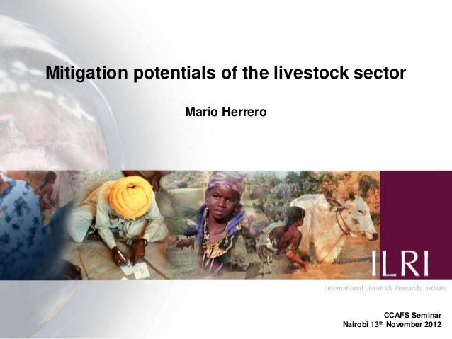 Mitigation potentials of the livestock sector                 Mario Herrero                                               ...