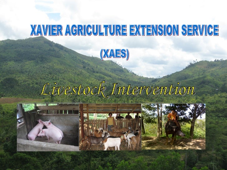 XAVIER AGRICULTURE EXTENSION SERVICE (XAES) Livestock Intervention