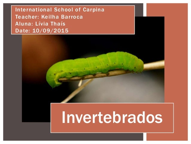 Invertebrados International School of Carpina Teacher: Keilha Barroca Aluna: Lívia Thaís Date: 10/09/2015