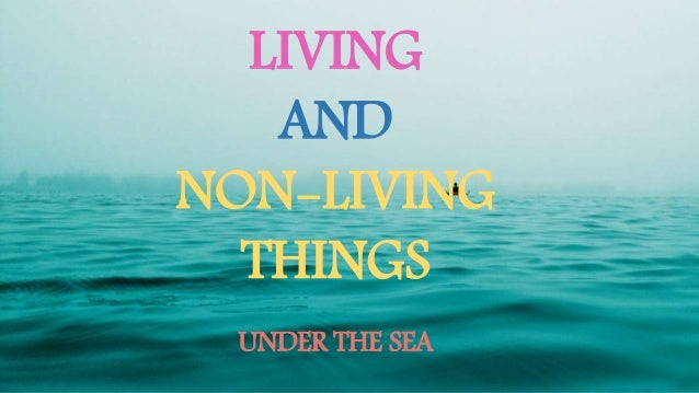 LIVING AND NON-LIVING THINGS UNDER THE SEA