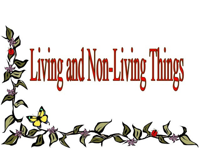 Characteristics ofLiving and Non-living Things         Activities