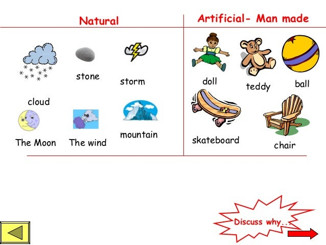 Living And Non Living Things Powerpoint 1 on Basic Plant Life Cycle