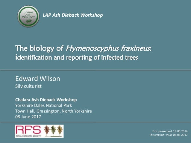 LAP Ash Dieback Workshop The biology of Hymenoscyphus fraxineus: identification and reporting of infected trees Edward Wil...