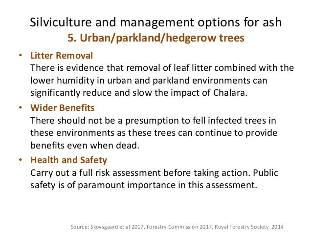 management objectives for a semi natural woodland Conservation objectives (inc ancient semi-natural woodland (asnw)) 45,547 area of forest protected from commercial harvesting of timber and managed primarily for.