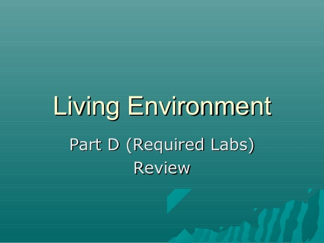 Living Environment Part D (Required Labs) Review
