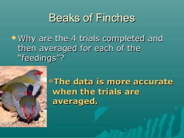 """Beaks of Finches  Why  are the 4 trials completed and then averaged for each of the """"feedings""""? The  data is more accura..."""