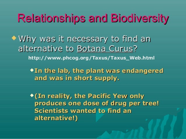 Relationships and Biodiversity  Why  was it necessary to find an alternative to Botana Curus? http://www.phcog.org/Taxus/...