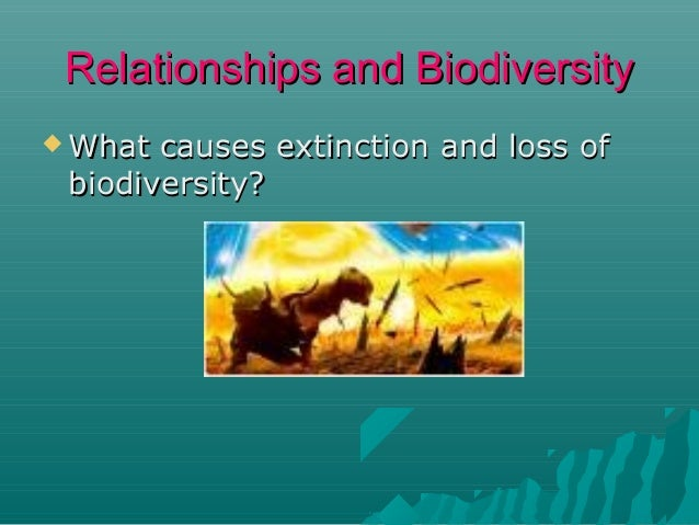 Relationships and Biodiversity  What  causes extinction and loss of biodiversity?  Change  in environment   Disease  H...