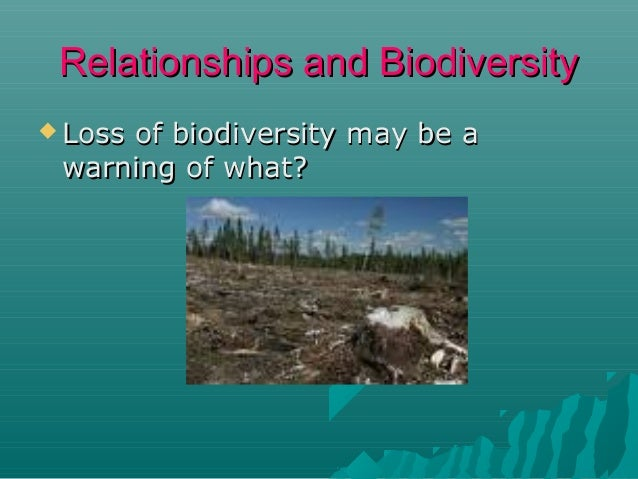 Relationships and Biodiversity  Loss  of biodiversity may be a warning of what?  Extinction  Unstable  environment